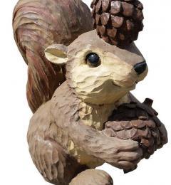 veverica-storzi